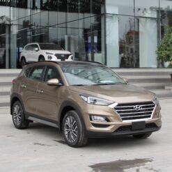 Hyundai Dong Do Tucson Cat2